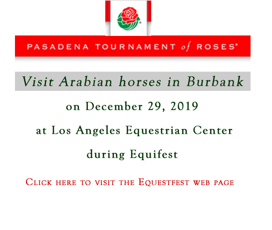2019 rose parade news