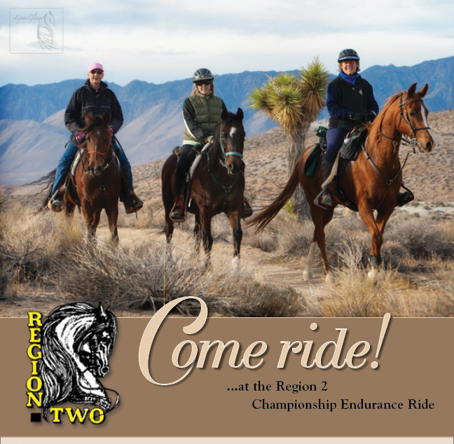 Region2 Championship Endurance Ride